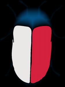 Chrząszcz #7: lipcowy